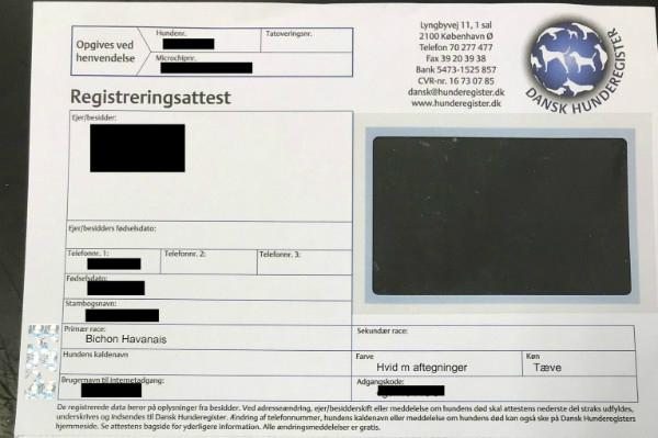 registrerings attest fra Dansk Hunderegister