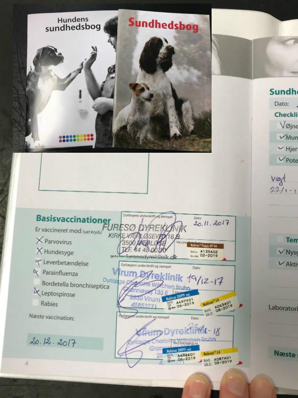 sundhedsbog med basis vaccination